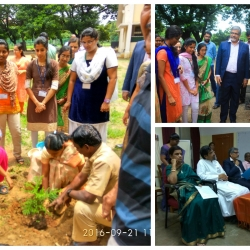 loyola-college-autonomous-adopt-a-tree-project-supported-by-ase-structure-design-pvt-ltd-as-part-of-csr-called-the-green-kalam-project_0