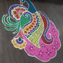 rangoli-drawing-competition-2015-1